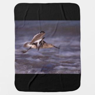 willet in flight swaddle blanket