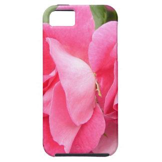 William Baffin Rose iPhone SE/5/5s Case