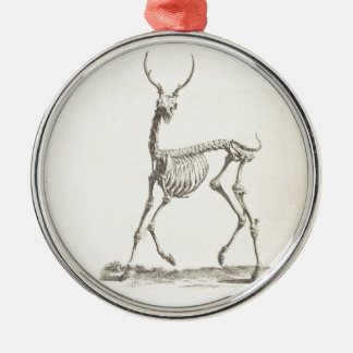 William Cheselden Deer Skeleton Metal Ornament