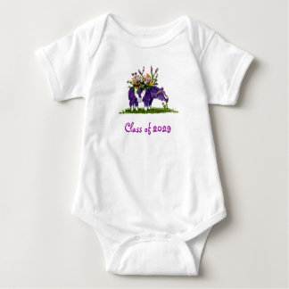 Williams College Class of 2029 Baby Bodysuit