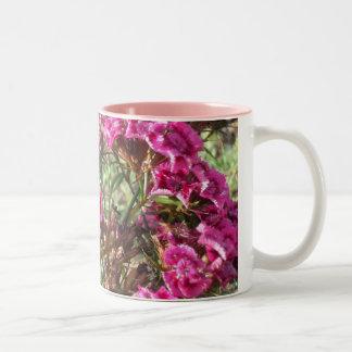 Williams dulce rosado tazas de café