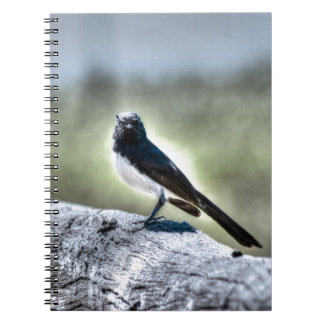 WILLIE WAGTAIL AUSTRALIA WITH ART EFFECTS NOTEBOOK