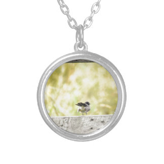 WILLIE WAGTAIL RURAL QUEENSLAND AUSTRALIA SILVER PLATED NECKLACE
