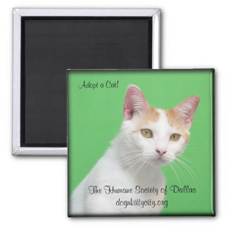 Willimina - Adopt A Cat Magnet