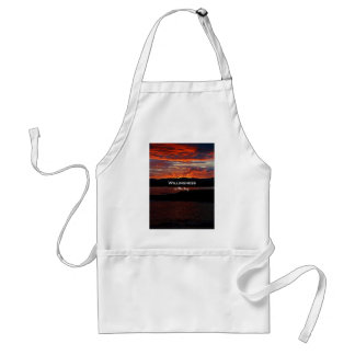 Willingness Is The Key Adult Apron