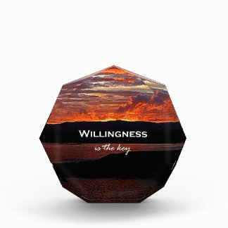 Willingness Is The Key Awards