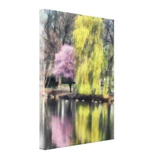 Willow and Cherry by Lake Canvas Print