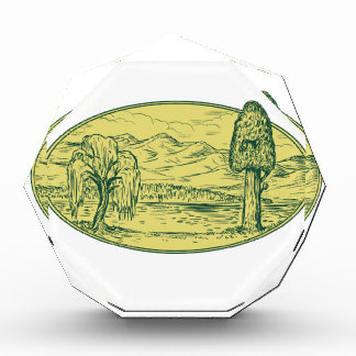 Willow And Sequoia Tree Lake Mountains Oval Drawin Acrylic Award