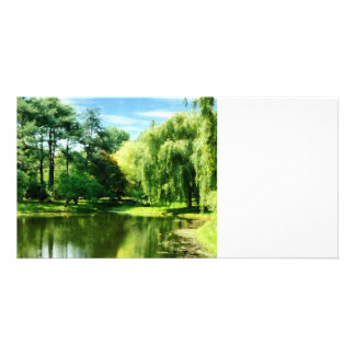 Willow By the Lake Photo Greeting Card