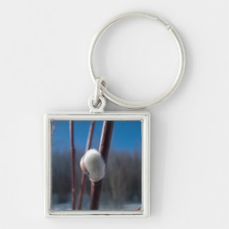 Willow Catkin Close-Up; No Text Keychain