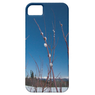 Willow Catkin Portrait iPhone 5 Covers
