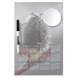 Willow Catkin Study; 2013 Calendar Dry Erase Board With Mirror