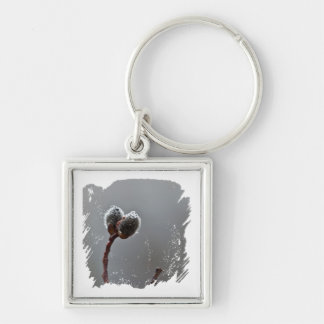 Willow Catkins After Spring Rain Keychain