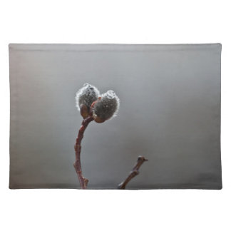 Willow Catkins After Spring Rain Placemat