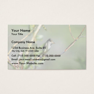 Willow Flycatcher Business Card