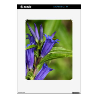 Willow gentian (Gentiana asclepiadea) Decal For iPad