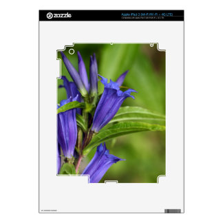 Willow gentian (Gentiana asclepiadea) Decal For iPad 3