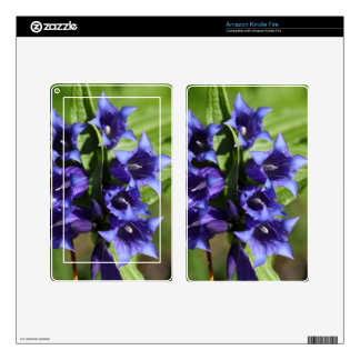 Willow gentian (Gentiana asclepiadea) Decals For Kindle Fire