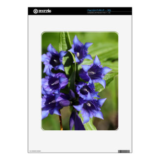 Willow gentian (Gentiana asclepiadea) Decals For The iPad