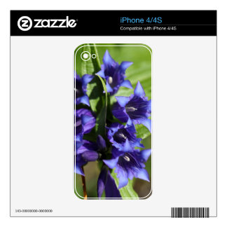 Willow gentian (Gentiana asclepiadea) Decals For The iPhone 4S
