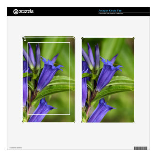 Willow gentian (Gentiana asclepiadea) Kindle Fire Decals