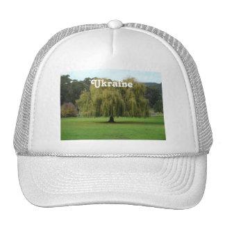 Willow Trucker Hats