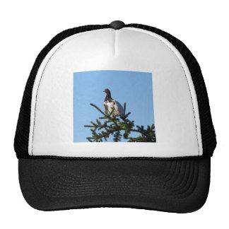 Willow Ptarmigan Hats