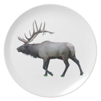 Willow Wapiti elk Melamine Plate