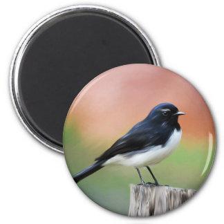 Willy Wagtail - Australian Bird Art Refrigerator Magnets