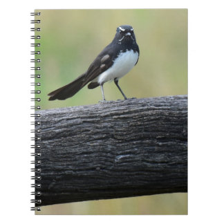 WILLY WAGTAIL ON FENCE QUEENSLAND AUSTRALIA NOTEBOOK