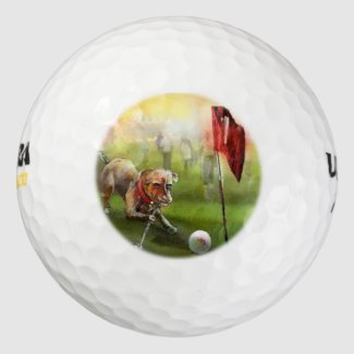 Wilson 500 golf balls with the dog golf image