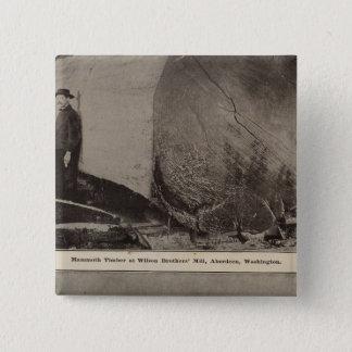 Wilson Bros Mill Bird's eye view of Aberdeen Button