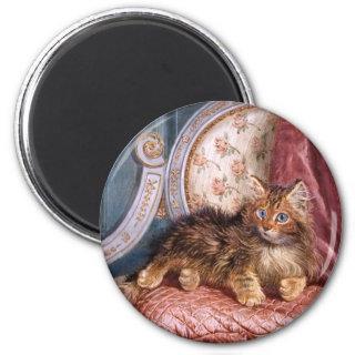 Wilson Hepple: Brown Kitten on an Armchair Fridge Magnets