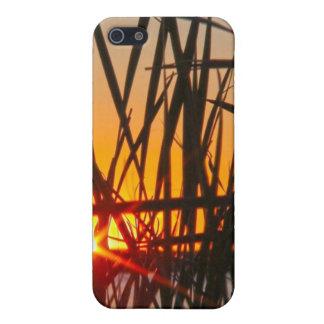 Wilson Sunset Case iPhone 5 Case