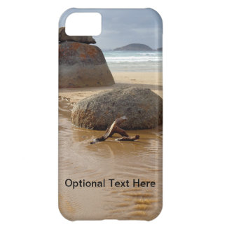 Wilson's Prom Whiskey Beach Case For iPhone 5C
