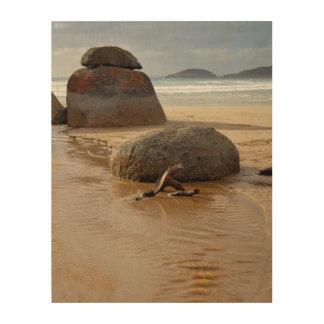 Wilson's Prom Whiskey Beach Wood Canvases