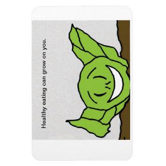 Wilt lettuce magnet