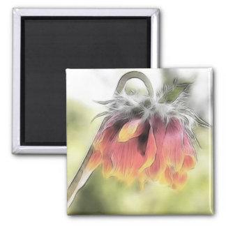 Wilted Blanket Flower Magnet