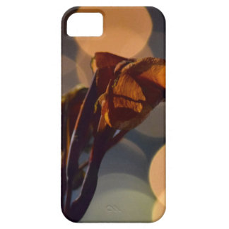 Wilted Flower iPhone SE/5/5s Case