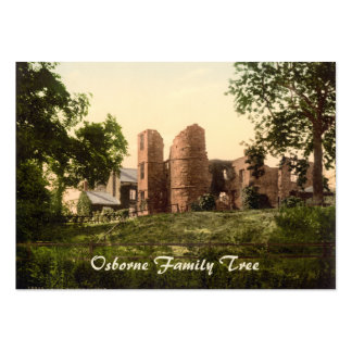 Wilton Castle, Ross-on-Wye, Herefordshire, England Large Business Cards (Pack Of 100)
