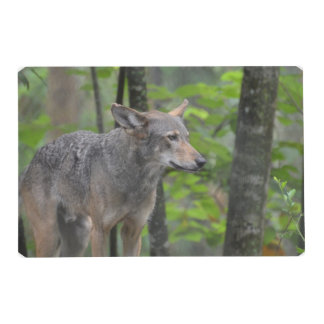 Wily Wolf Laminated Place Mat