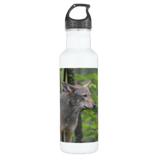 Wily Wolf 24oz Water Bottle