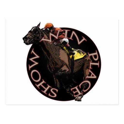todays horse racing cards