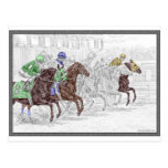 Win Place Show Race Horses Post Card