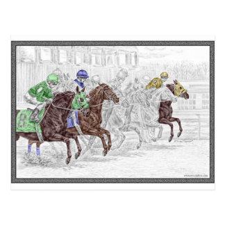 Win Place Show Race Horses Postcard