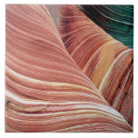 Wind and water eroded Navajo  sandstone in Large Square Tile
