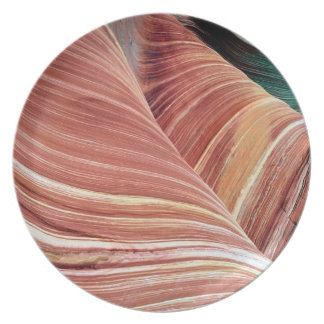 Wind and water eroded Navajo  sandstone in Melamine Plate