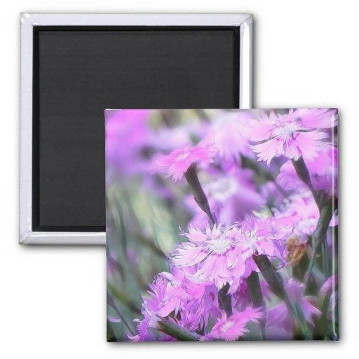 Wind Blown Dianthus Fridge Magnet