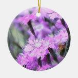 Wind Blown Dianthus Ornaments