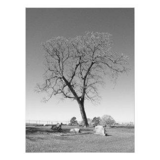 Wind blown photo print
